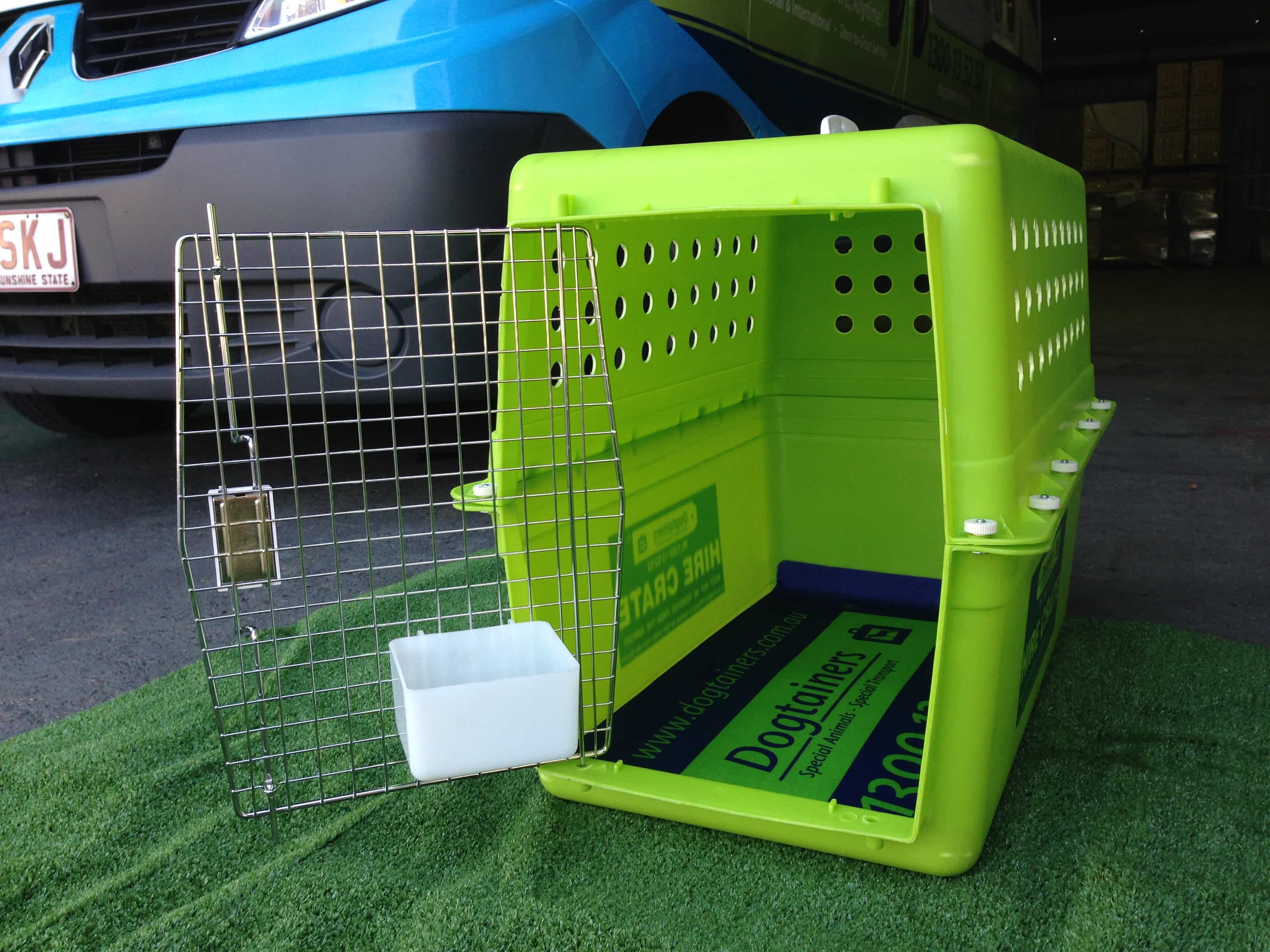 Vets 4 Pets Qatar - International pet relocation services in